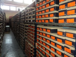 Almacenaje en la industria maderera